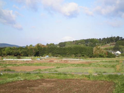 春の田んぼと富士74