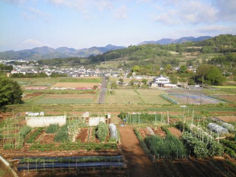 春の田原盆地88