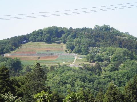 新緑の里山27