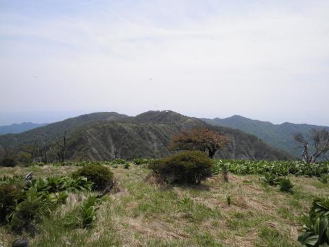 塔が岳を望む260