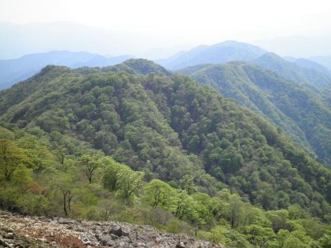 鍋割山を望む320