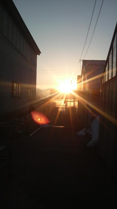 朝日20110222