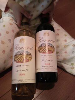 2010エコワイン