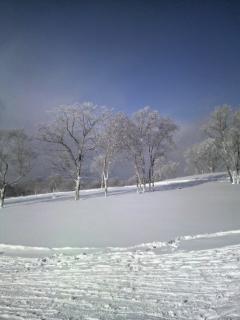 洞爺景色2011010810580000