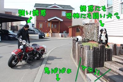 IMG_6632-2.jpg