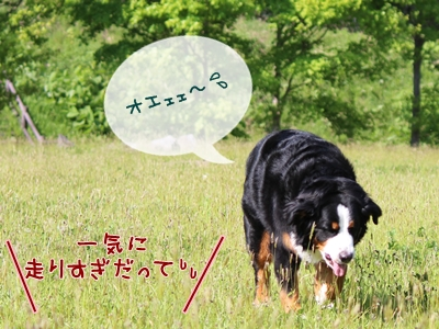 IMG_8055-1.jpg
