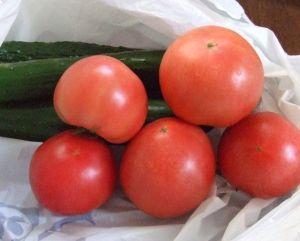 トマト&キュウリ