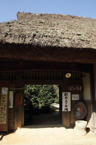 IuchiShinmaiF-01