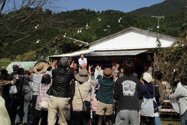 IuchiShinmaiF-09