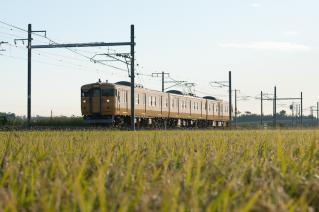 DSC_7711.jpg