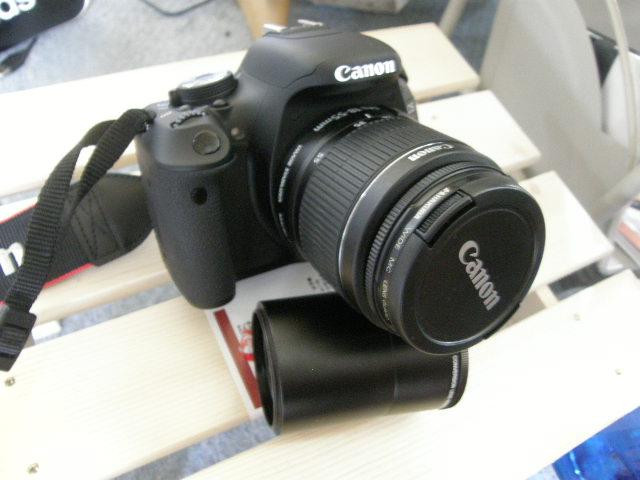 P8220126.jpg