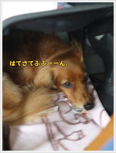 018_20110607213529.jpg