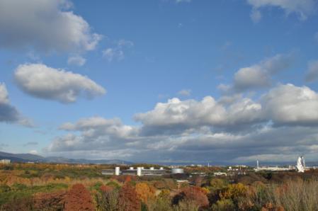 2011-12-12.jpg