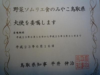 s-P1020855.jpg