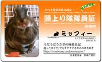 20120910154616cda.jpg