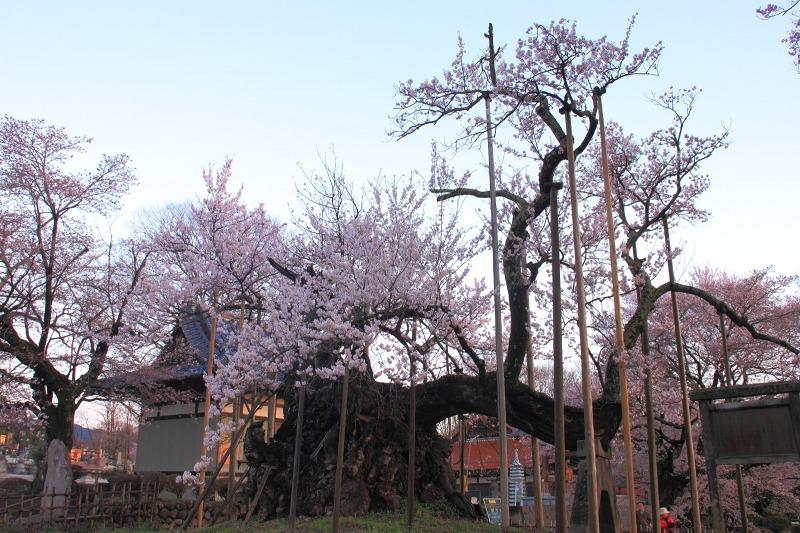 2012年4月15日 黒岳_003
