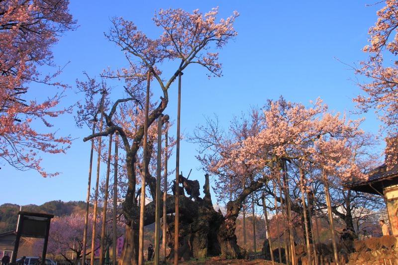 2012年4月15日 黒岳_004