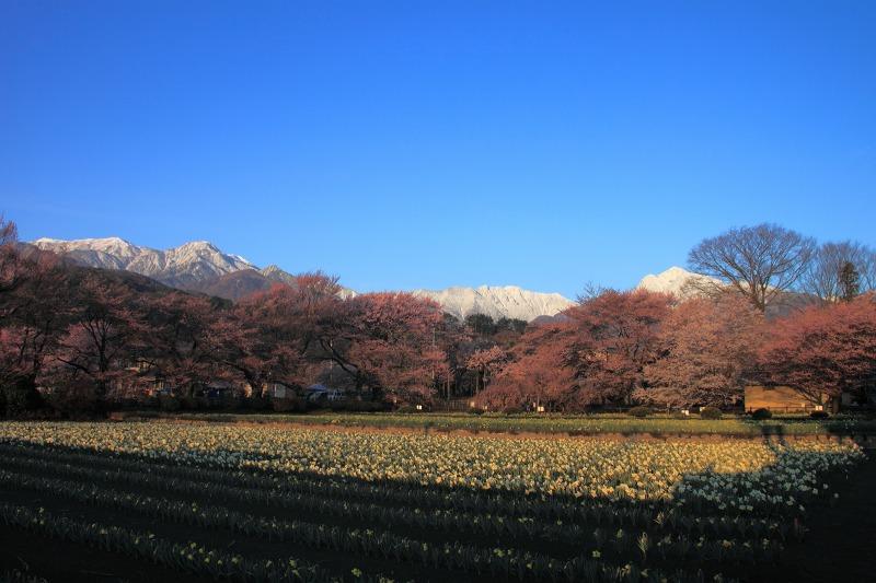 2012年4月15日 黒岳_007