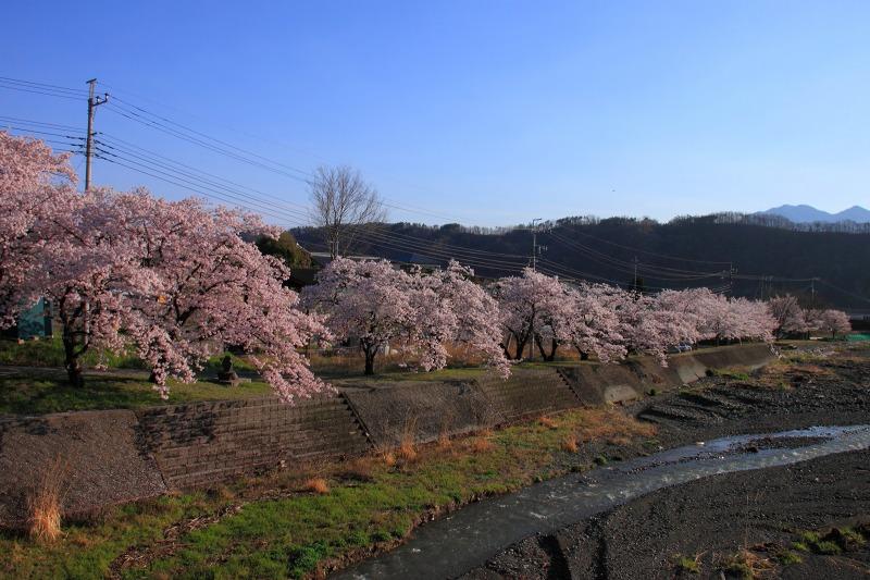 2012年4月15日 黒岳_011