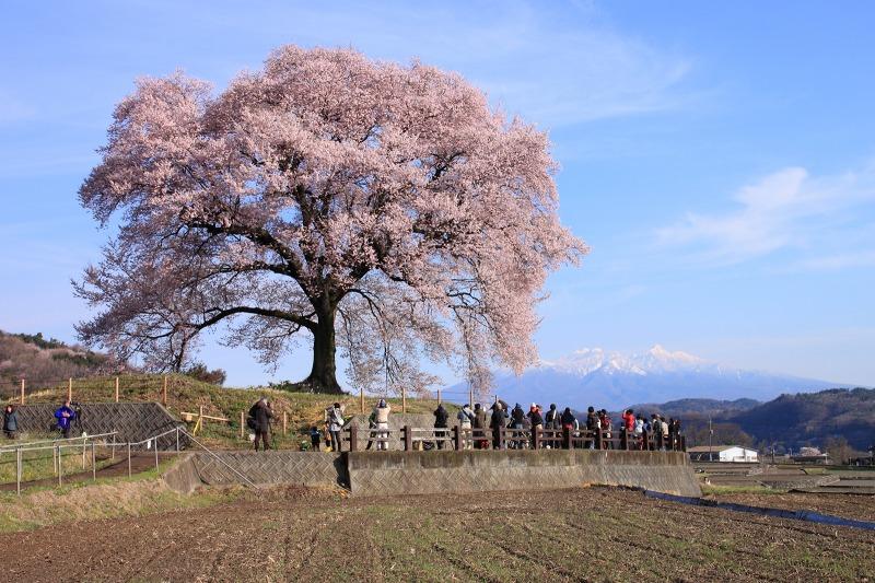 2012年4月15日 黒岳_016