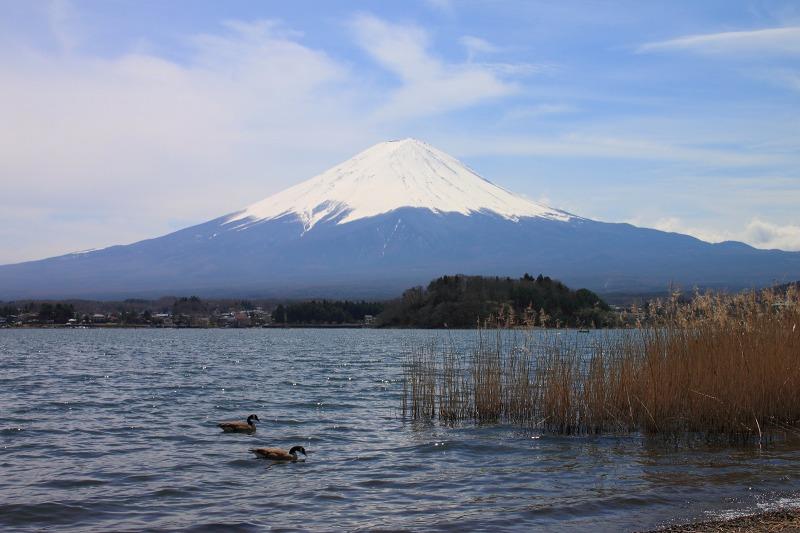2012年4月15日 黒岳_039
