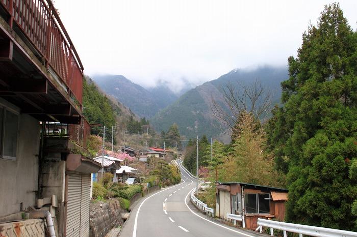 海沢渓谷_017
