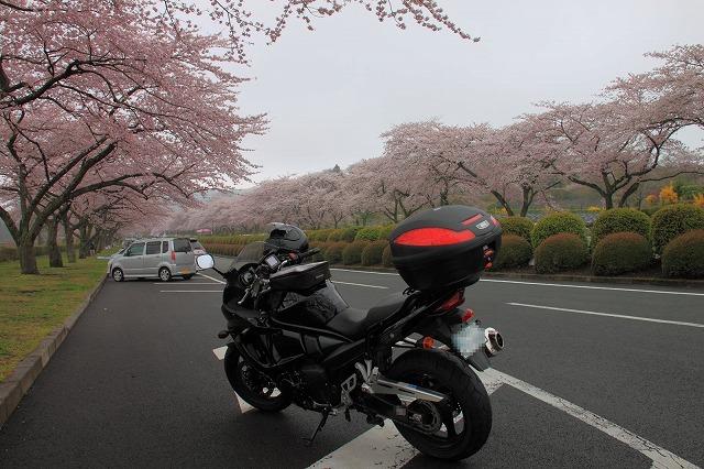 2012年4月21日海沢渓谷_009