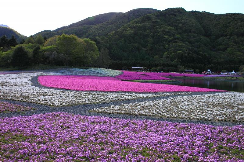 御坂黒岳_002