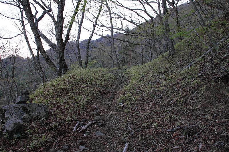 御坂黒岳_011