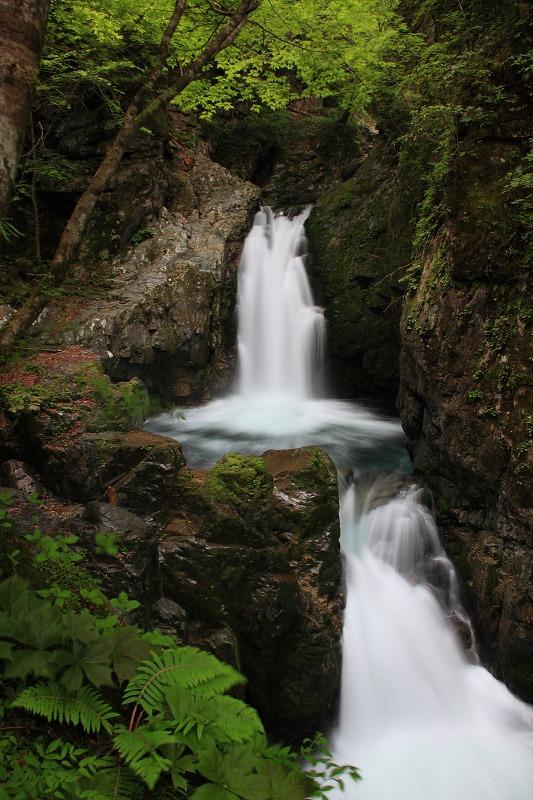 根尾の滝2日目_005