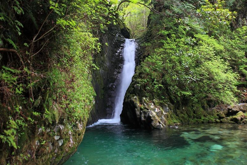 根尾の滝2日目_007