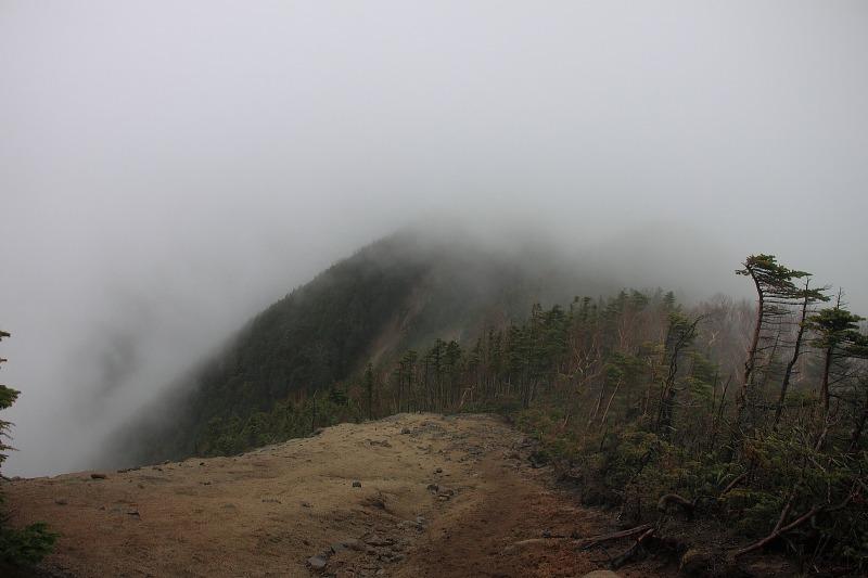 2012年6月10日 甲武信ヶ岳_017