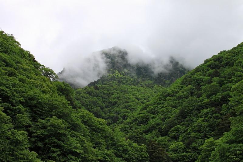 2012年6月10日 甲武信ヶ岳_031