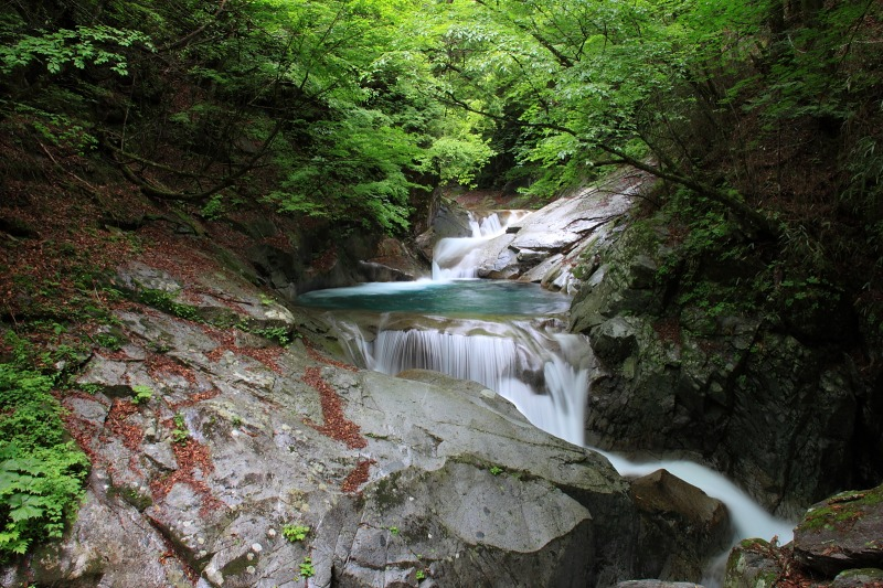 2012年6月10日 甲武信ヶ岳_033