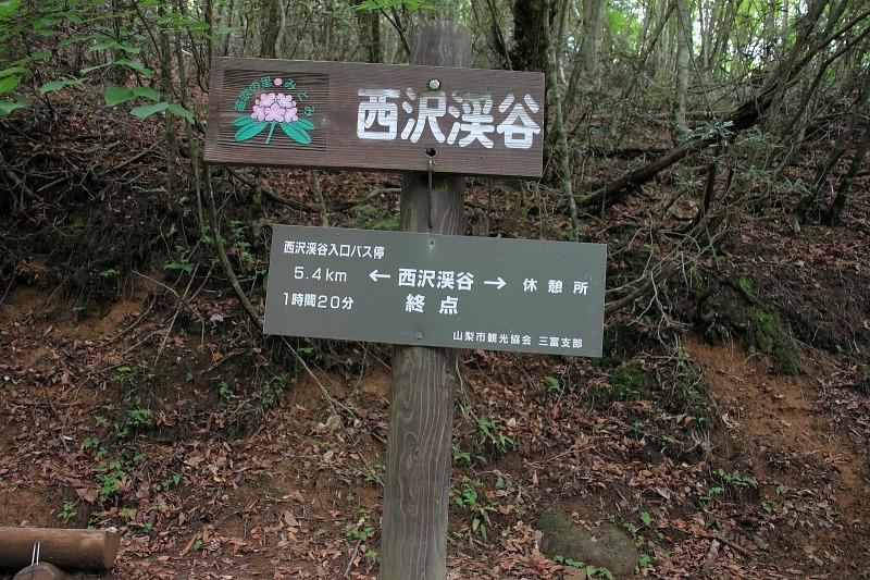 2012年6月10日 甲武信ヶ岳_044