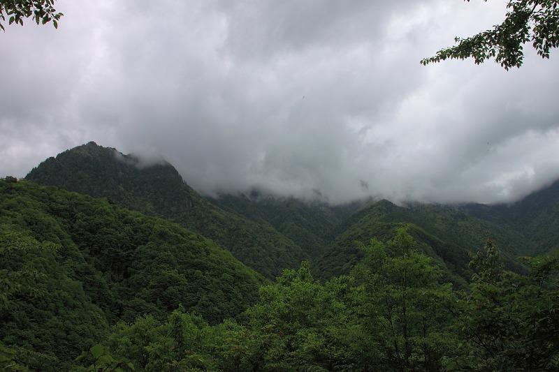 2012年6月10日 甲武信ヶ岳_046