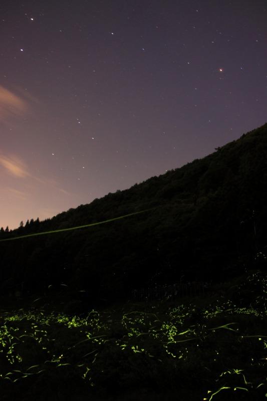 2012年6月17日'12辰野ホタル52