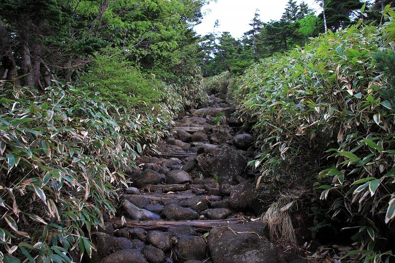 6月24日 御嶽山~田立の滝_005