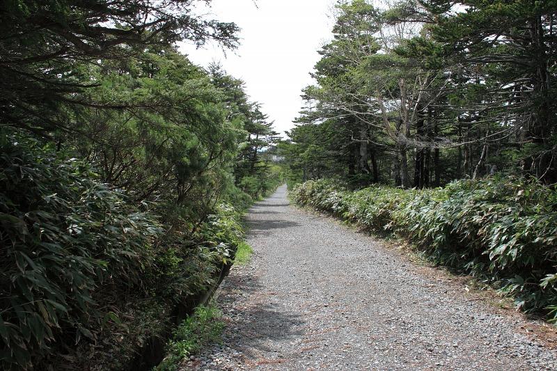 6月24日 御嶽山~田立の滝_039