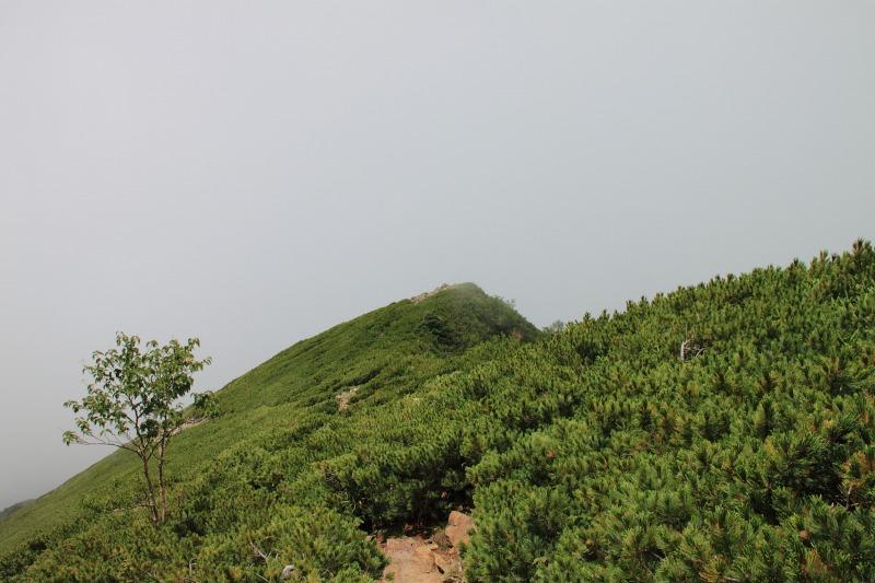 2012年8月25日 甲斐駒ケ岳_051