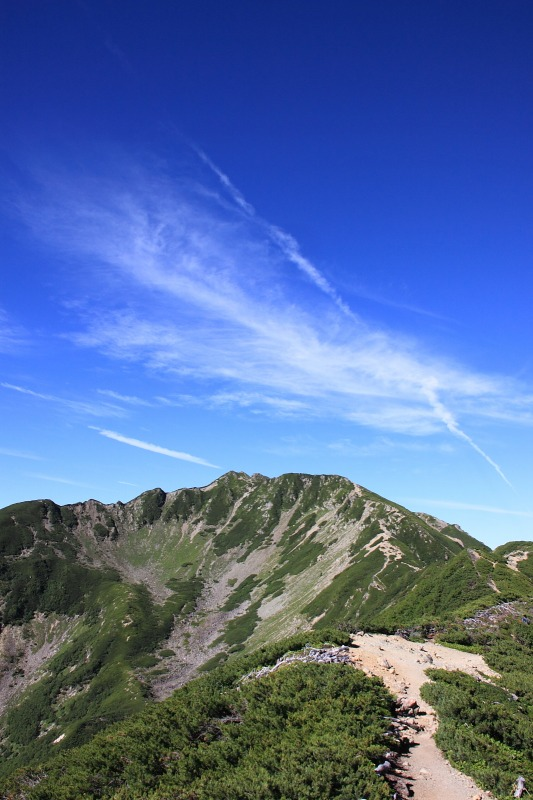 2012年8月26日 仙丈ケ岳_049