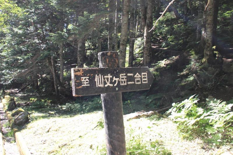 2012年8月26日 仙丈ケ岳_057