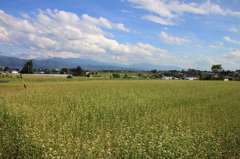 2012年9月16日 燕岳_047