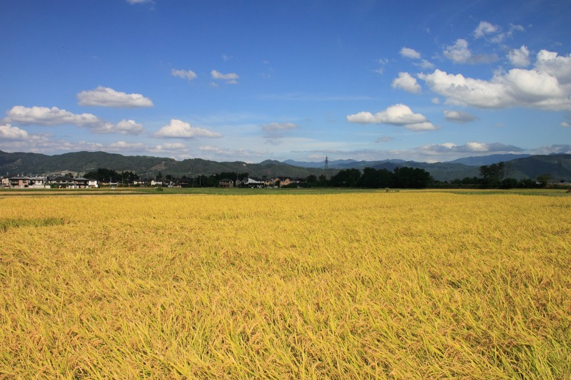 2012年9月16日 燕岳_048