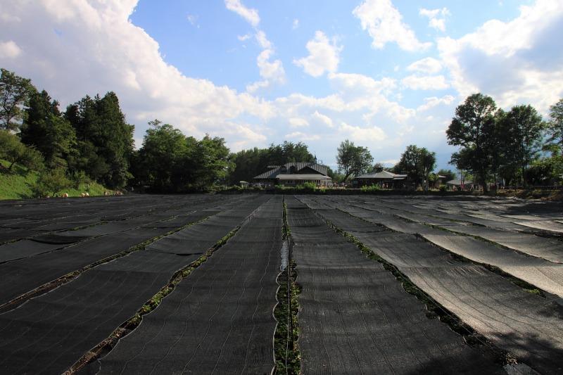 2012年9月16日 燕岳_055