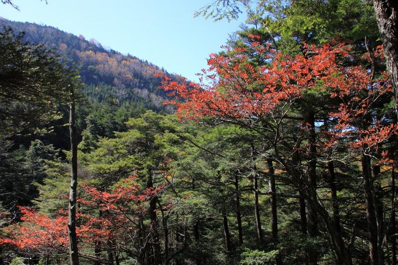 2012年10月21日 天狗岳271