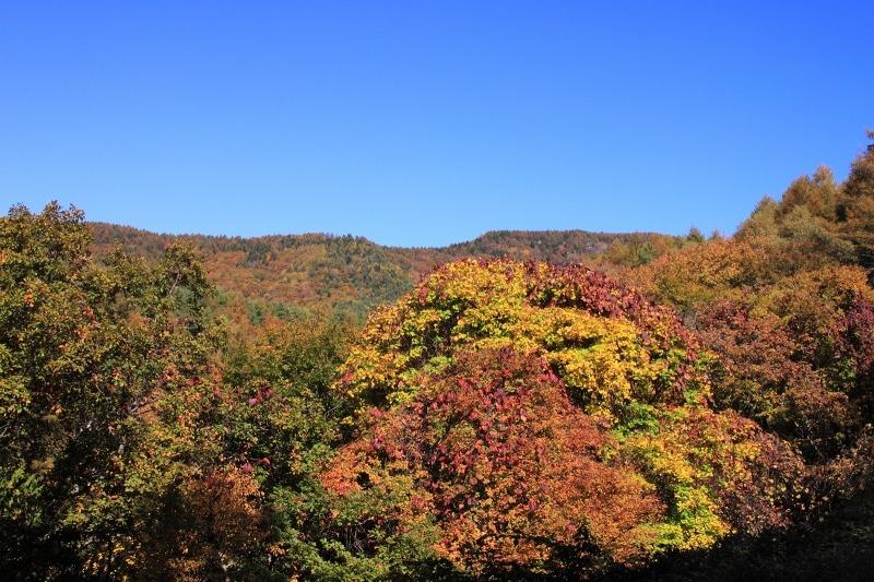 2012年10月21日 天狗岳306