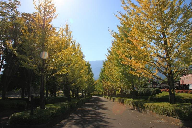 2012年10月21日 天狗岳346