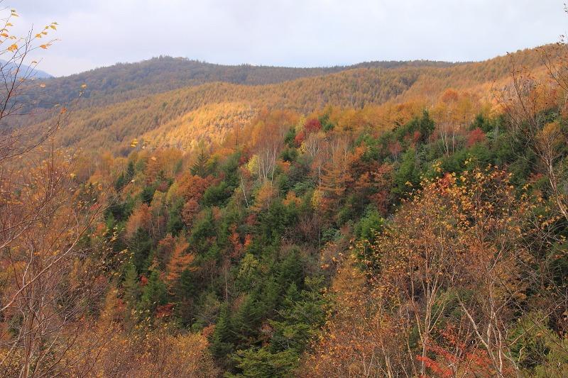 2012年10月27日金峰山~尾白川渓谷_024