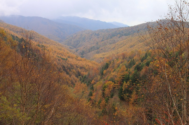 2012年10月27日金峰山~尾白川渓谷_023